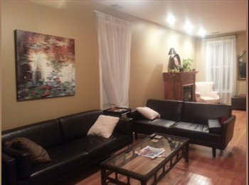 Roommate needed in sunny, cozy, gut-rehabbed house...
