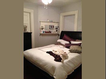 EasyRoommate US - Room to rent - South Boston, Boston - $737 /mo