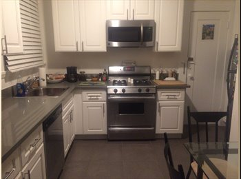 Huge 1 Bedroom for Rent, Great location, Available Dec. 1