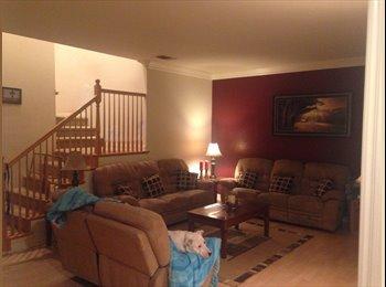 EasyRoommate US - Large room  - Murrieta, Southeast California - $625 /mo