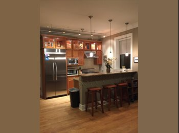 EasyRoommate US - 2 bedrooms available in Lakeview condo - Lakeview, Chicago - $850 /mo