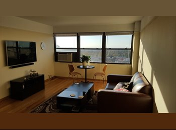 EasyRoommate US - Room with a view in Buena park - Lakeview, Chicago - $850 /mo