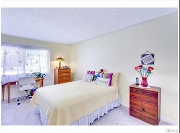 2 Large rooms for rent