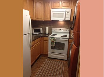 EasyRoommate US - Semi Private Entrance Fully Furnished with twin bed Nice kitchen with washer dryer WiFi and Cable in - Bellevue, Bellevue - $900 /mo