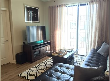 EasyRoommate US - Modera Westshore Room for Rent with Private Bathroom - West Tampa, Tampa - $735 /mo
