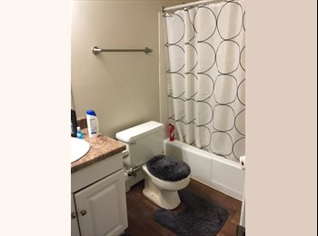 EasyRoommate US - 1 bedroom available for rent in Westmont - Naperville, Naperville - $550 /mo