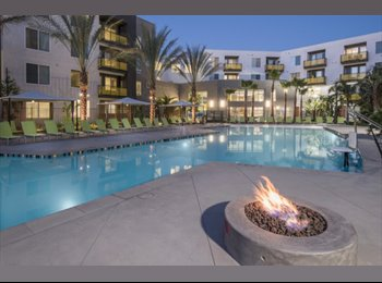 EasyRoommate US - Room available in 2 bedroom luxury apt. by sdsu - Mission Valley, San Diego - $700 /mo