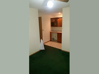 EasyRoommate US - Seeking professional, responsible individual to rent room. - Joplin, Joplin - $300 /mo