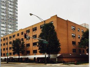 EasyRoommate US - 1025 West Hollywood Ave - Edgewater, Chicago - $995 /mo