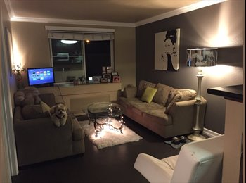 EasyRoommate US - Beautiful remodeled Little Italy room in 2bd/2bath - Avail now!!!  - Point Loma, San Diego - $1,200 /mo