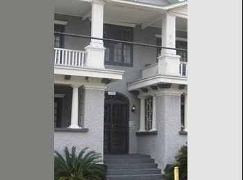 EasyRoommate US - Beautiful Room available in two bedroom apartment  - Garden District, New Orleans - $700 /mo