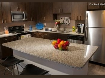 EasyRoommate US - Takeover 1br/1ba Lease - Brand New Millennium Apartments $500 - Norman, Norman - $799 /mo
