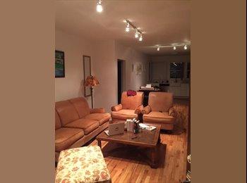 Brand New Duplex in Echo Park/Silver Lake  - Los Angeles