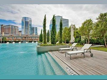 EasyRoommate US - Luxurious Condo in Oak Lawn - Oak Lawn, Dallas - $1,950 /mo