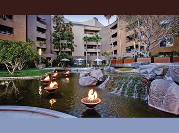 EasyRoommate US - $1275 - Master Bdr/Private bath in luxurious Apt. Move in NOW! - Costa Mesa, Orange County - $1,275 /mo