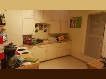 EasyRoommate US - 3 bed 1 bath from January-May, less than a mile from campus - Eau Claire, Eau Claire - $270 /mo