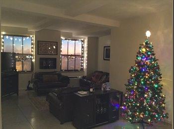 EasyRoommate US - Beautiful apartment to share. - Bridgeport, Bridgeport - $800 /mo