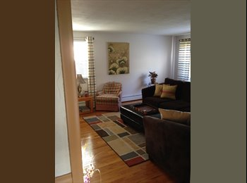 Roommate Wanted Westfield MA.