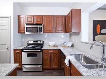 Looking for a Male Young Professional Room Mate