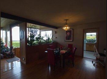 EasyRoommate US - North Beach home with stunning views - Ballard, Seattle - $1,200 /mo