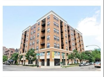EasyRoommate US - 2 Bed 2 Bath in Uptown - Uptown, Chicago - $950 /mo