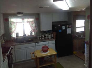 EasyRoommate US - Room for rent in Apache Junction, Citrus - $400 /mo