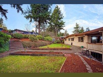 EasyRoommate US - East Bellevue Basement rental - Bellevue, Bellevue - $750 /mo