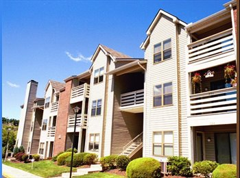 EasyRoommate US - Beautiful 1BR Monroeville Apt available for immediate move-in! - East Allegheny, Pittsburgh - $870 /mo