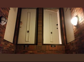 EasyRoommate US - one bedroom apartment in Oakland - North Allegheny, Pittsburgh - $900 /mo
