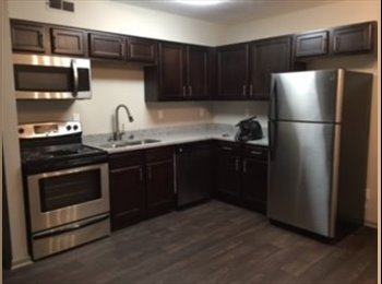 Looking for roommate for my  2bed 1bath apartment.