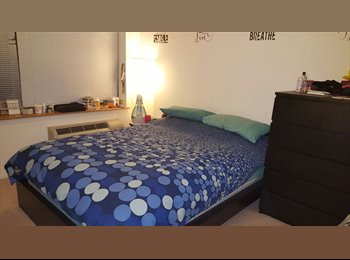 Master Bedroom in a 2 Bed/ 2 Bath available for rent