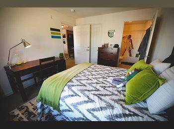 3 BDR apartment at the grove