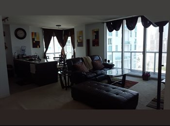 Roommate Needed for Brickel High Rise Apt