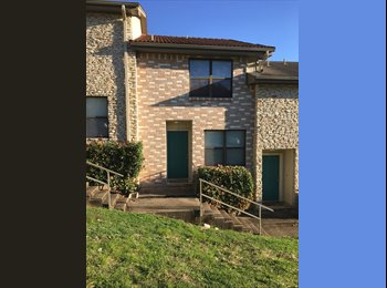 EasyRoommate US - Roommate needed for 2016-2017 year! Close to campus! Cheap rent! - San Marcos, San Marcos - $445 /mo
