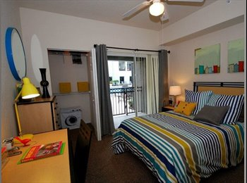 EasyRoommate US - One bed/one bath available in a 4/4  - North Tampa, Tampa - $609 /mo