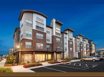 EasyRoommate US - 1 bedroom with independent bathroom - Mecklenburg County, Charlotte Area - $500 /mo