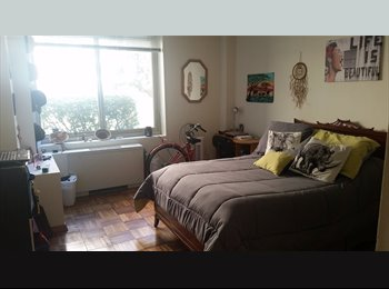 Spacious room for rent in gorgeous Van Ness Apartment
