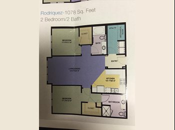 EasyRoommate US - Roommate Wanted for Apartment - Downtown Tampa, Tampa - $730 /mo