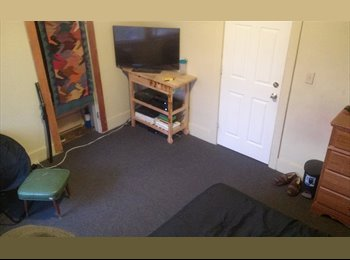 EasyRoommate US - $600 / 1br - 1 Bd on UM campus Mar 1 - Aug 31 (Hill St.) - Ann Arbor, Ann Arbor - $612 /mo