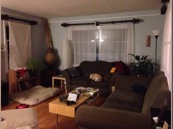EasyRoommate US - 1 BR Available in Desirable Ravenna Neighborhood - University District, Seattle - $1,000 /mo