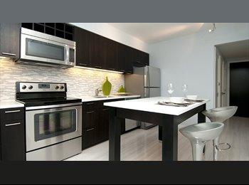 $970 Seeking Female Roommate. Luxury Building (Rosslyn)