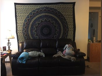 Looking for roommate to sublease one room