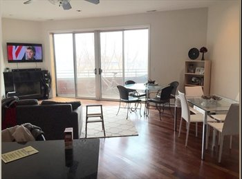 EasyRoommate US - Room for Rent -Wicker Park - Logan Square, Chicago - $900 /mo
