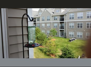 EasyRoommate US - Randolph Master Suite All Utilities Inc - Quincy, Boston - $1,200 /mo