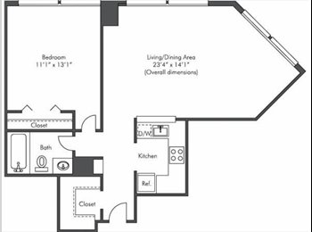 Apartment in Chicago Downtown Loop - Available for sharing