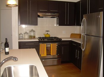 EasyRoommate US - Luxury 2 br 2 bth Roommate Share in the heart of downtown - Stamford, Stamford Area - $1,150 /mo