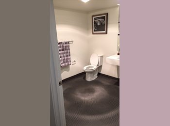 Historic Capitol Hill Room with Private Bathroom
