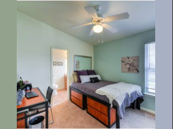 EasyRoommate US - Person to Sublease - San Marcos, San Marcos - $419 /mo