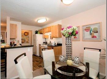 EasyRoommate US - Beautiful Apartment in UCF area - Orlando - Orange County, Orlando Area - $560 /mo