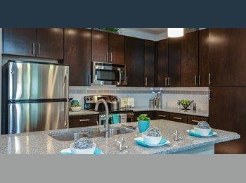 EasyRoommate US - Brand New Apartment - St Petersburg, St Petersburg - $1,241 /mo
